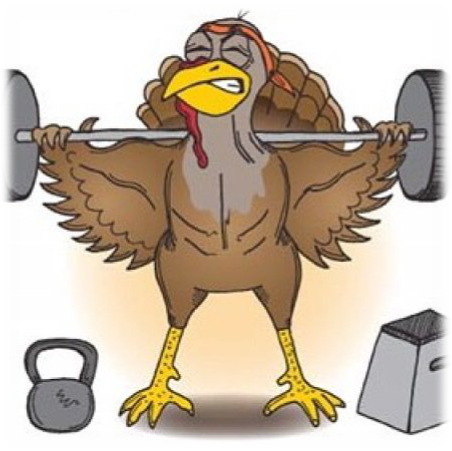 fit turkey.png